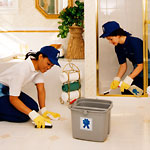 Maid to Perfection Cleaning Franchise